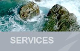 Hydro Logic Services